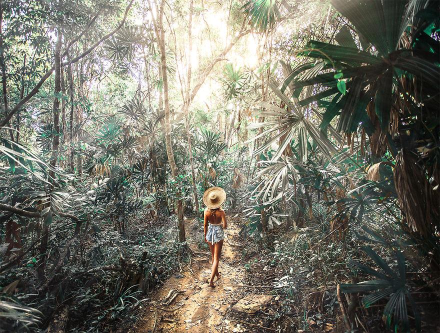 Джунгли на острове Кох Ронг Санлоем, Камбоджа