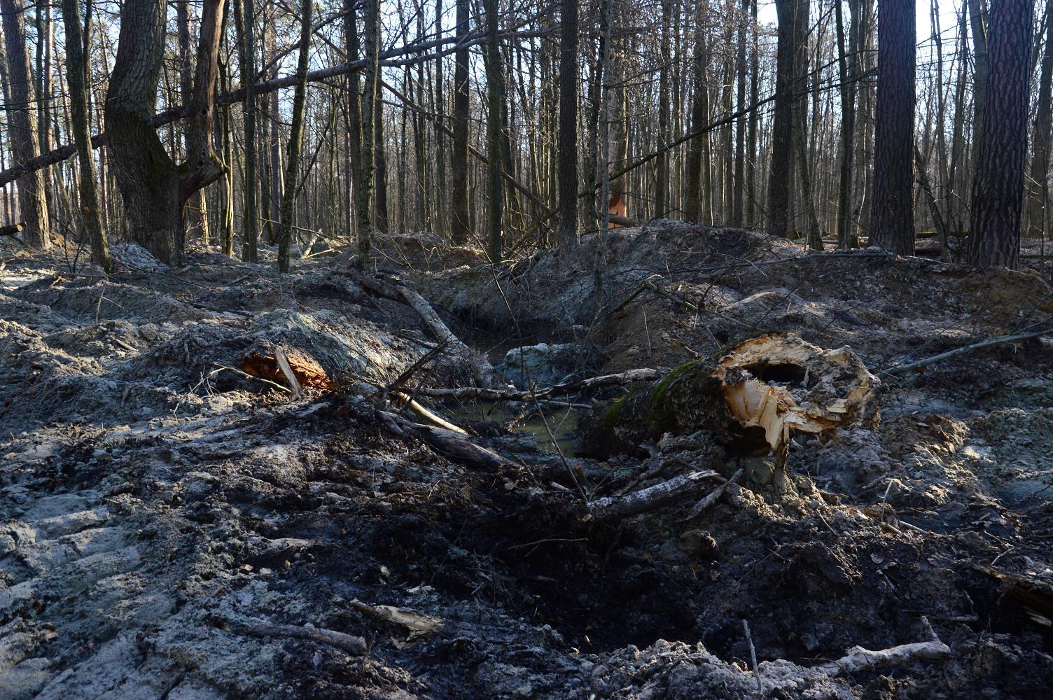 Нелегальная добыча янтаря в Олевском районе. Фото - Википедия