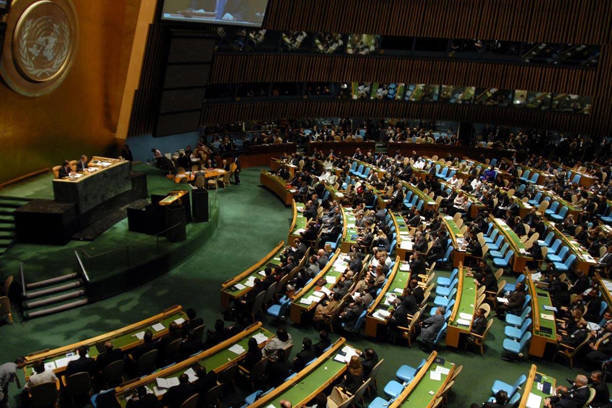 Заседание Организации Объединенных Наций / Источник: wikimedia.org
