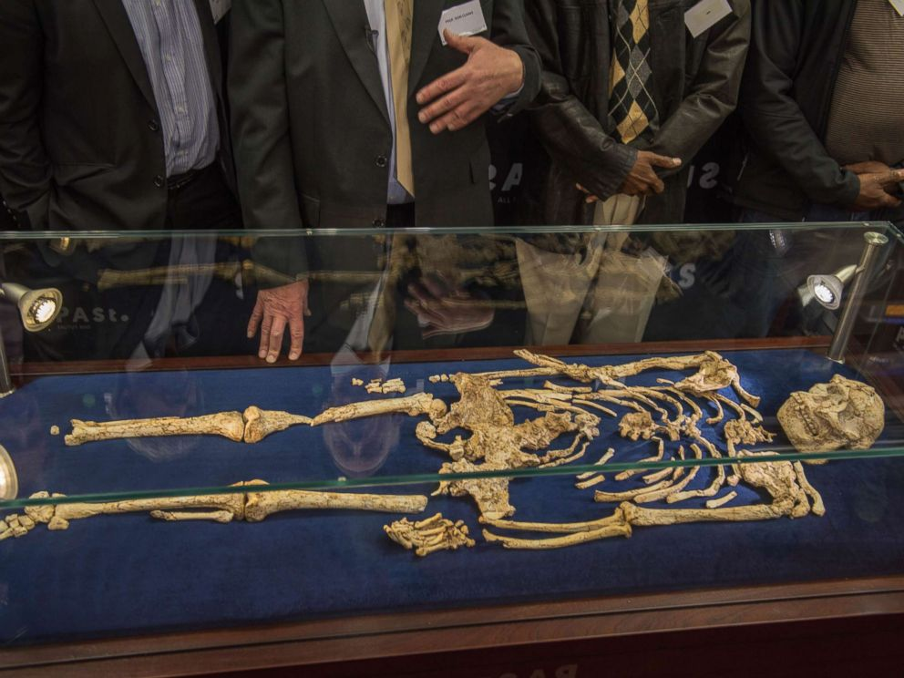 Ученые изЮАР представили публике скелет «древнейшего» человека