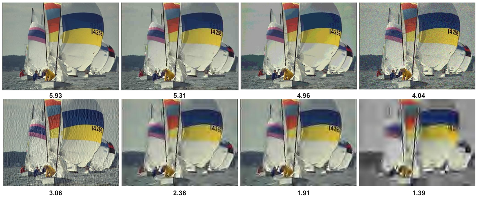 Прогнозируемые оценки NIMA показаны под каждым изображением. Самый высокий балл достался наиболее технически качественному снимку