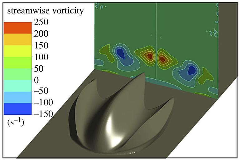 Результаты экспериментального определения линий воздушного потока для плоской поверхности крыла при двух углах атаки: 0 градусов (сверху) и 4 градуса (снизу)