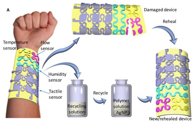 Схема устройства, его восстановления и переработки / Источник: Science Advances, 2018