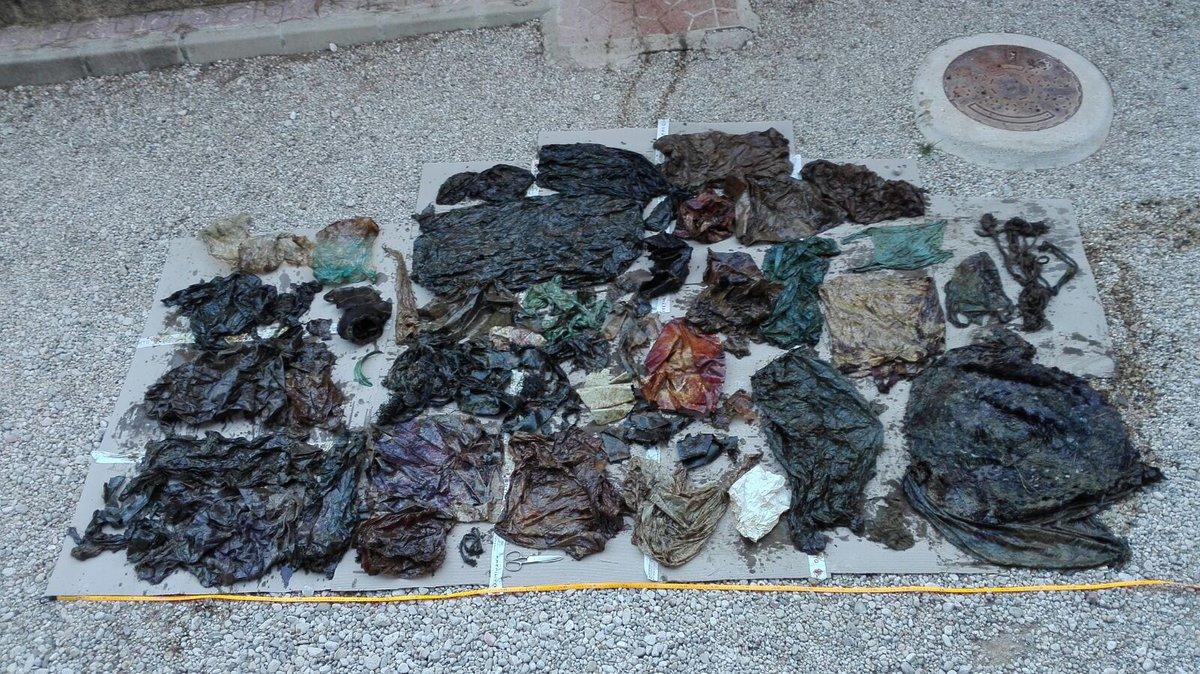 Пластиковый мусор, обнаруженный в желудке мертвого кашалота / Источник: Twitter @EspNaturalesMur