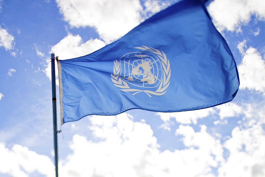 В 2015 году Украина перешла на новые правила проведения госзакупок лекарственных средств – через международные некоммерческие организации системы ООН