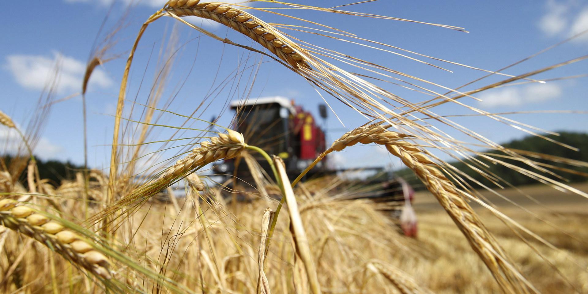 """""""Спрос на валюту станет повышаться, а валюты заходить будет меньше, учитывая, что есть вероятность проседания мировых цен на сырье, а основные экспортные поступления Украина получает от поставок металла и зерна"""""""