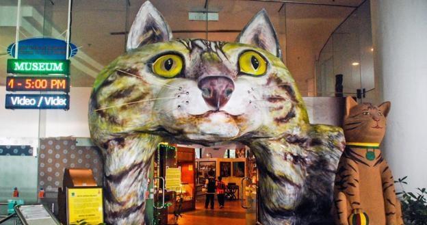 Здесь можно проследить историю кошек за 5000 лет