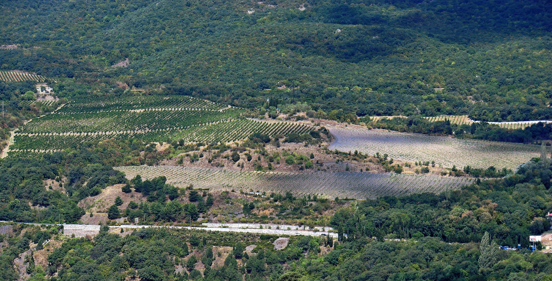 Благодаря украинским водным ресурсам засушливую крымскую степь удалось превратить в край возделанных полей, садов и виноградников