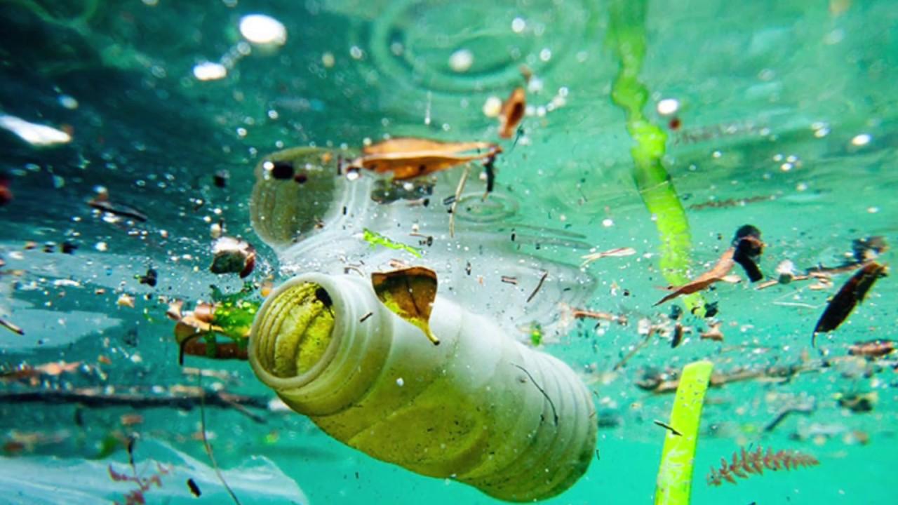 В туристический сезон в море попадает на 40% больше мусора, чем в несезонный период