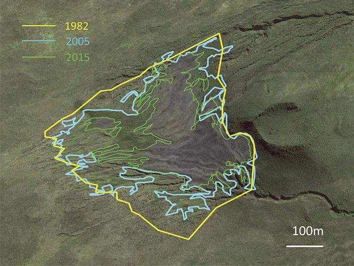 Так изменился размер колонии королевских пингвинов на острове Кошон с 1982 года
