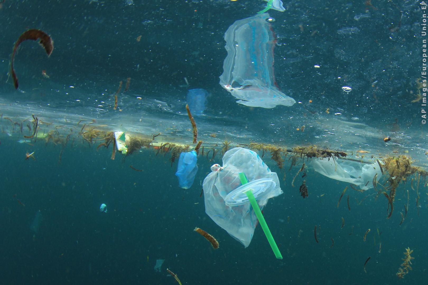 Европарламент хочет запретить одноразовый пластик с 2021 года
