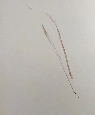 Эшби утверждает, что следы крови на двери принадлежат Хэнсону / Daily Mail