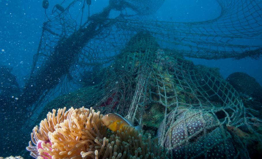 Рыболовные сети и другие снасти составляют значительную часть пластика в морях и океанах